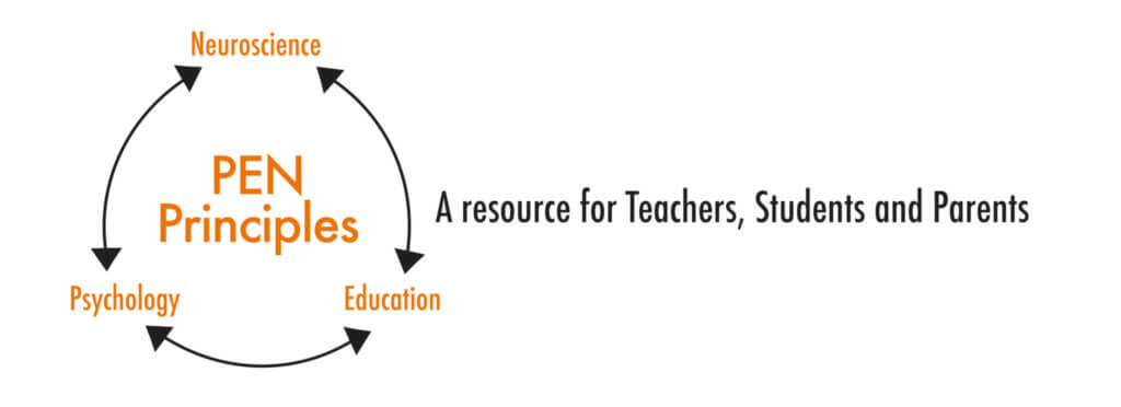pen principle graphic for website